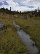 trail under water